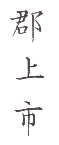 "<span class=""title"">実用書写「市・区版」Part-239</span>"